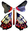 Ja-Ru Butterfly Wind Up (Supplied Design May Vary):