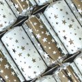 Silver Stars Christmas Crackers (6 Pack):