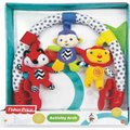 Fisher Price Activity Arch: