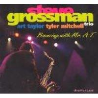 David Sylvian - Bouncing With Mr At (CD): David Sylvian