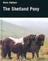 The Shetland Pony (Hardcover): Anna Hodson