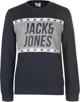 Jack and Jones Mens Core Jcopassion Crew Sweater (Sky and Goblin):