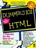 Dummies 101: Hmtl (Paperback): Dummies Press