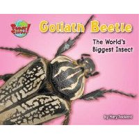 Goliath Beetle - One of the World's Heaviest Insects (Hardcover): Mary Packard