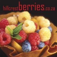 Hillcrestberries.co.za (Loose-leaf): Betty O&#39Grady