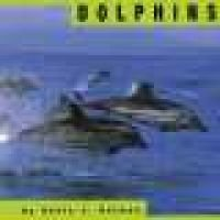 Dolphins (Large print, Hardcover, large type edition): Kevin J Holmes