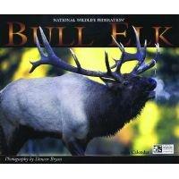 Bull Elk - National Wildlife Federation (Calendar): Willow Creek Press