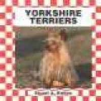Yorkshire Terriers (Hardcover, Library binding): Stuart A Kallen