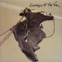 Colossus Of The Fall (CD): Colossus Of The Fall