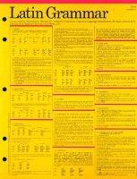 Latin Grammar Card (Paperback): Thornton A. McGill