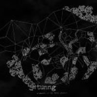 Tunng - Comments of the Inner Chorus (Vinyl record): Tunng