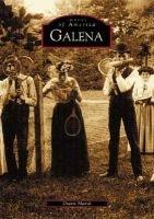 Il Galena (Paperback): Diann Marsh
