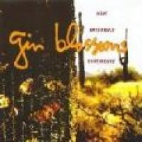 Gin Blossoms - New Miserable Experience (CD): Gin Blossoms