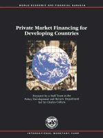 Private Market Financing for Developing Countries (Paperback): Charles Collyns