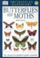 Handbooks: Butterflies & Moths - The Clearest Recognition Guide Available (Paperback, 2nd American ed): David Carter