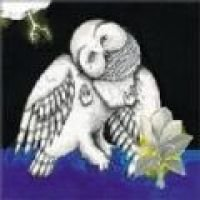 The Magnolia Electric Co. (CD):