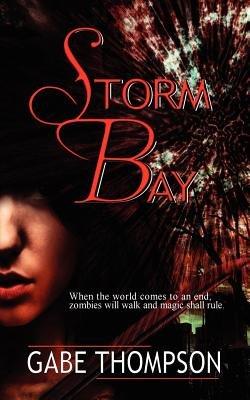 Storm Bay (Paperback): Gabe Thompson