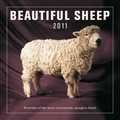 Beautiful Sheep 2011 (Calendar):