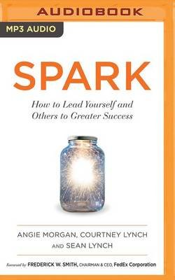 Spark - How to Lead Yourself and Others to Greater Success (MP3 format, CD): Angie Morgan, Courtney Lynch, Sean Lynch