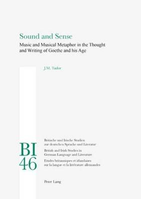 Sound and Sense: Music and Musical Metaphor in the Thought and Writing of Goethe and His Age (Electronic book text): J.M. Tudor