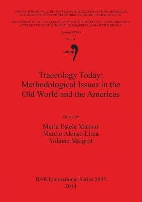 Traceology Today: Methodological Issues in the Old World and the Americas - Vol 6, Session XXXV (Paperback): Marcio Alonso...