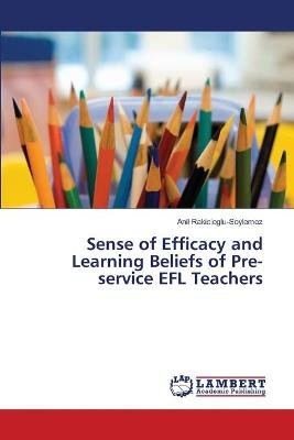 Sense of Efficacy and Learning Beliefs of Pre-Service Efl Teachers (Paperback): Rakicioglu-Soylemez Anil