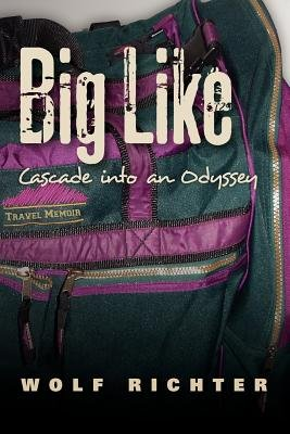 Big Like - Cascade Into an Odyssey (Paperback): Wolf Richter