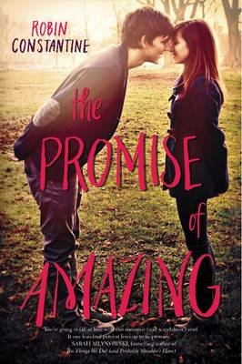 The Promise of Amazing (Paperback): Robin Constantine