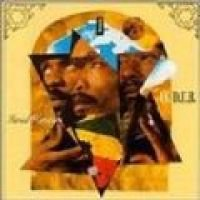Israel Vibration - I V Dub (CD): Israel Vibration