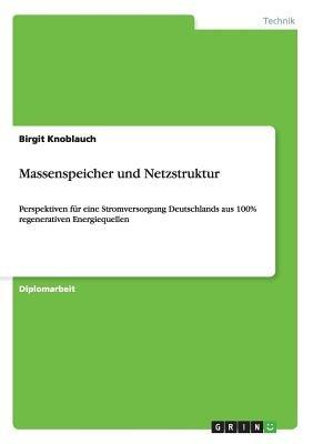 Massenspeicher Und Netzstruktur (German, Paperback): Birgit Knoblauch