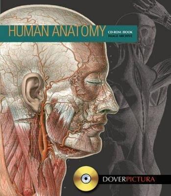 Human Anatomy (Paperback, Green ed.): Alan Weller