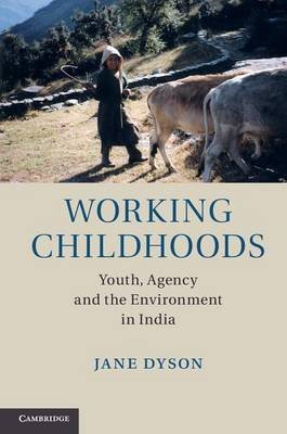 Working Childhoods (Electronic book text): Jane Dyson