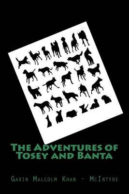 The Adventures of Tosey and Banta (Paperback): Gavin Malcolm Khan-McIntyre