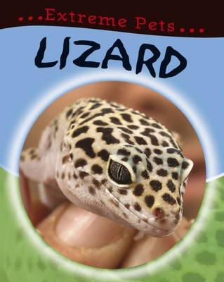 Lizard (Hardcover): Deborah Chancellor