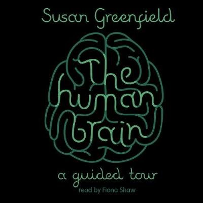 The Human Brain - A Guided Tour (Downloadable audio file): Susan Greenfield