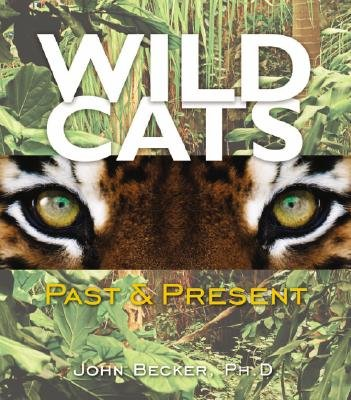 Wild Cats - Past & Present (Hardcover): John Becker