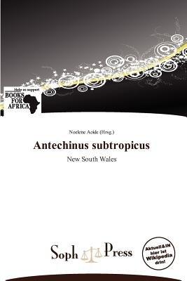 Antechinus Subtropicus (German, Paperback): Noelene Aoide