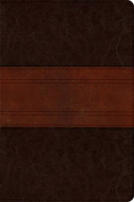 ESV MacArthur Study Bible, Personal Size (Leather / fine binding): John MacArthur