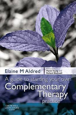 A Guide to Starting Your Own Complementary Therapy Practice (Electronic book text): Elaine Mary Aldred
