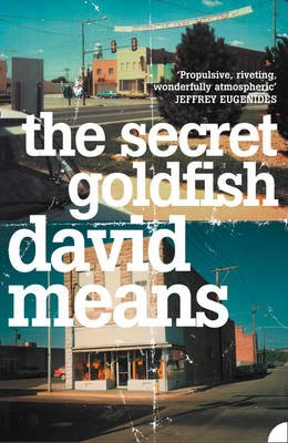 The Secret Goldfish (Electronic book text): David Means