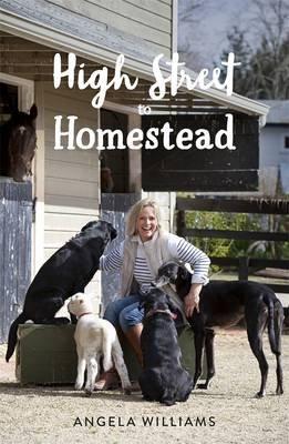 High Street to Homestead (Paperback): Angela Williams