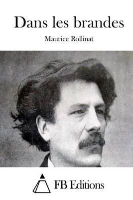 Dans Les Brandes (French, Paperback): Maurice Rollinat