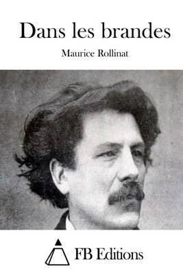 Dans Les Brandes (French, Paperback): Maurice Rollinat