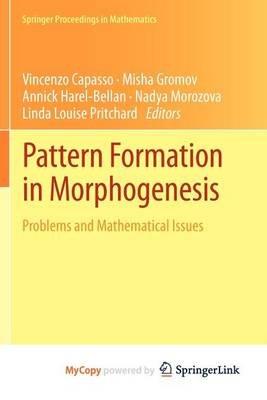 Pattern Formation in Morphogenesis (Paperback):