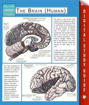 The Brain (Human) (Speedy Study Guides) (Electronic book text): Speedy Publishing LLC