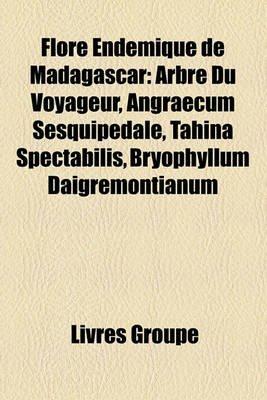 Flore Endmique de Madagascar - Arbre Du Voyageur, Angraecum Sesquipedale, Tahina Spectabilis, Bryophyllum Daigremontianum...