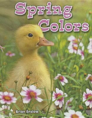 Spring Colors (Electronic book text): Brian Enslow