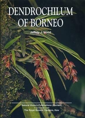 Dendrochilum of Borneo (Hardcover): J.J Wood