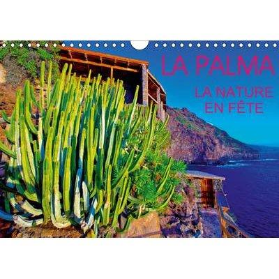 La Palma, la Nature en Fete 2017 - Vegetation Exuberante et Endemique, une Surprise de Tous les Instants, sur l'Ile de la...