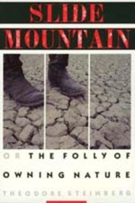 Slide Mountain - Or, The Folly of Owning Nature (Paperback, Revised): Theodore Steinberg